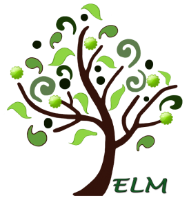Get Ready for Fall at ELM