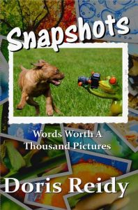 Snapshots cover